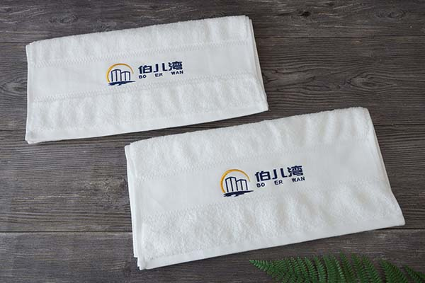 Custom 100 Cotton Hotel Hand Towel With Embroidery Logo